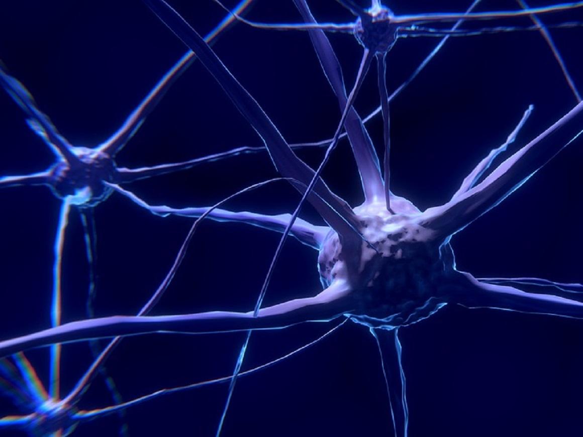 Вирус простого герпеса — причина болезни Альцгеймера