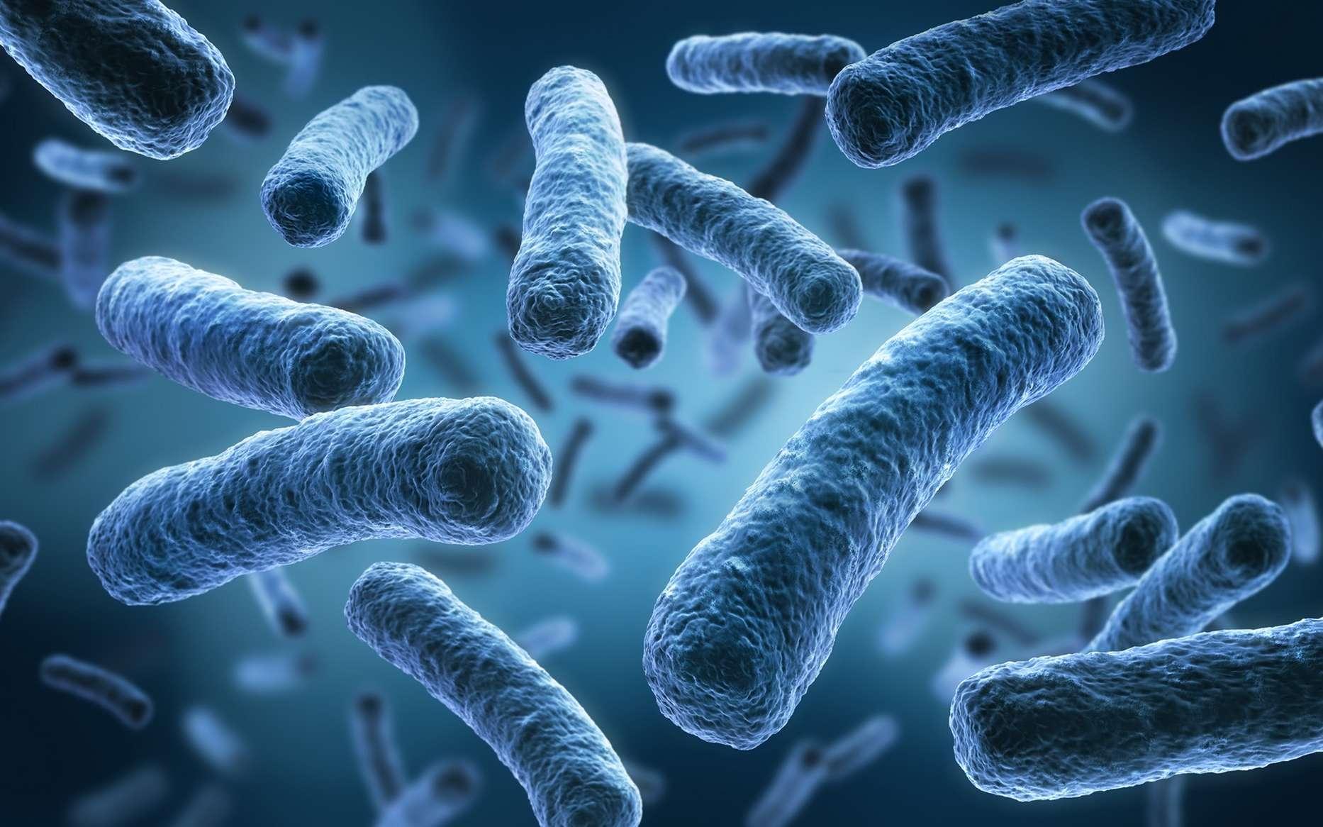 Кишечная микрофлора помогает иммунной системе бороться с герпесом
