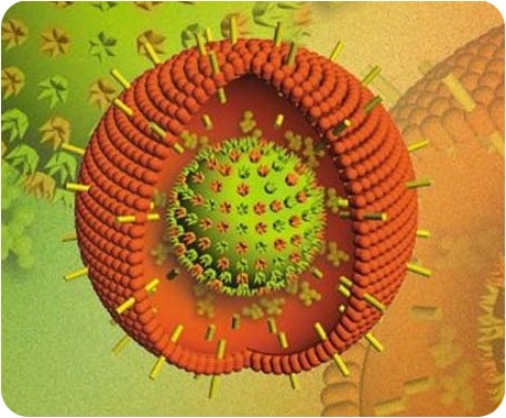 При шизофрении наблюдается высокий уровень антител против вируса Эпштейна-Барр